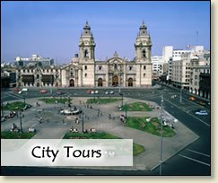 Your Best City Tours